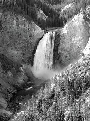 Photograph - Lower Yellowstone Falls Bw by Jean Wright