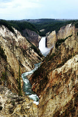 Photograph - Lower Yellowstone Falls by Eric Foltz