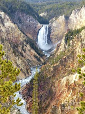 Photograph - Lower Yellowstone Falls From Artist Point by Jean Wright