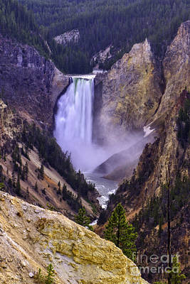 Photograph - Lower Yellowstone Falls by Moore Northwest Images