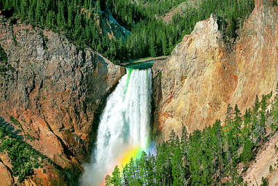 Photograph - Lower Yellowstone Falls by Todd Klassy