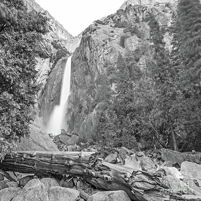Photograph - Lower Yosemite Falls In Black And White By Michael Tidwell by Michael Tidwell