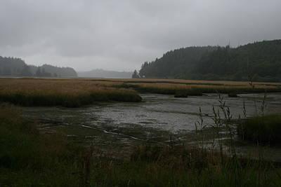 Photograph - Lowtide Mist Willapa by Dylan Punke