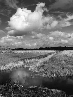 Priska Wettstein Pink Hues - Loxahatchee Canal And Cloud 4685 by Bob Neiman