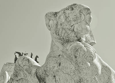 Photograph - Roman Loyalty And Liberty  by JAMART Photography