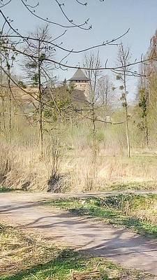 Photograph - Lubart Castle by Oleg Zavarzin
