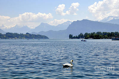 Photograph - Lucerne 12 by Andrew Dinh
