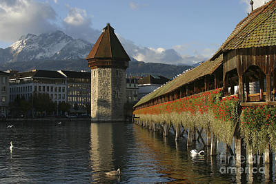 Photograph - Lucerne At Sunup by Stan and Anne Foster