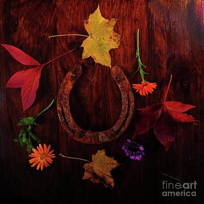 Photograph - Lucky Colors by Randi Grace Nilsberg