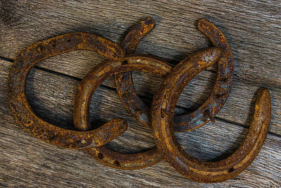 Photograph - Lucky Horseshoes by Randy Walton