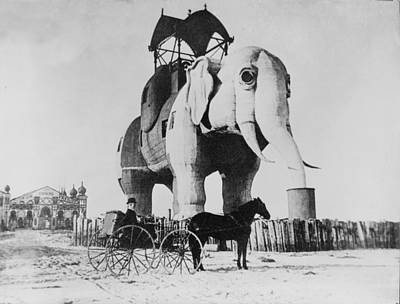 Photograph - Lucy The Margate Elephant by Richard Reeve
