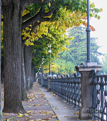 Photograph - Lugano In The Fall by Suzanne Oesterling
