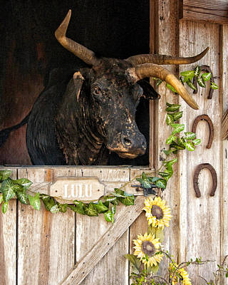 Lulu The Three-horned Cracker Cow Art Print by Mitch Spence