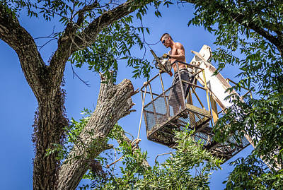Photograph - Lumberjack by Gregory Daley  PPSA