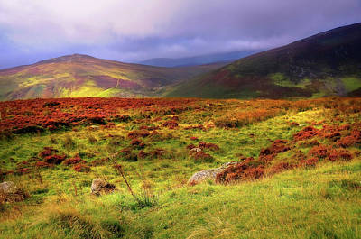 Photograph - Luminescent Light Over Wicklow Hills by Jenny Rainbow