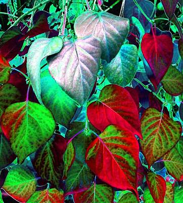 Iridescent Digital Art - Luminous Lilac Leaves by Will Borden