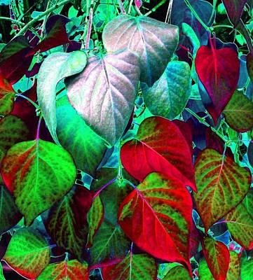 Fall Bushes Digital Art - Luminous Lilac Leaves by Will Borden