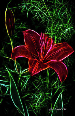 Photograph - Luminous Lily by Joann Copeland-Paul