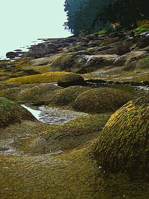 Lumps And Bumps Along Gabriola's Shoreline Original