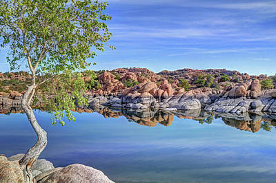 Watson Lake Reflections Photograph - Lumps Bumps And Curves by Donna Kennedy
