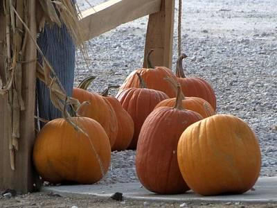 Photograph - Lumpy Pumpkins by Kyle West