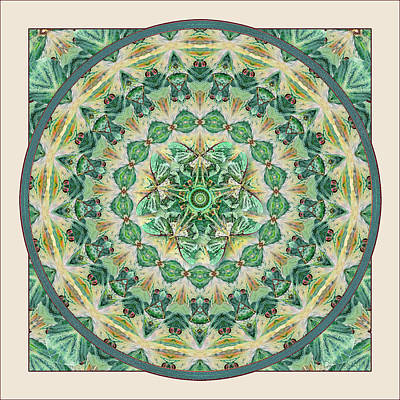 Digital Art - Luna Meditation Mandala by Deborah Smith