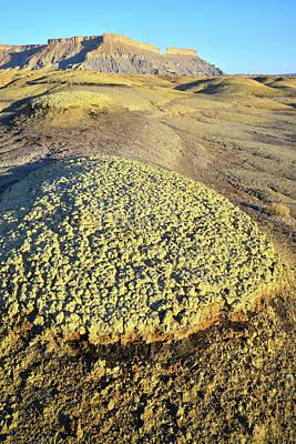Photograph - Luna Mesa Hamburgers by Ray Mathis