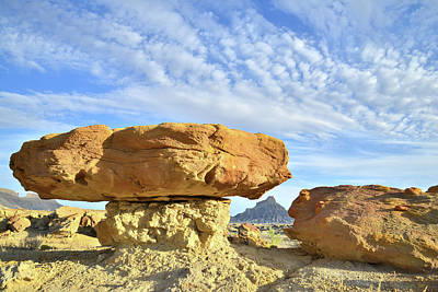 Photograph - Luna Mesa Toad Stool by Ray Mathis