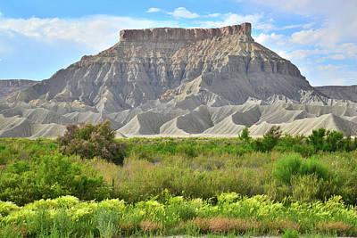 Photograph - Luna Mesa Utah by Ray Mathis