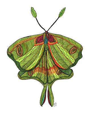 Luna Moth Drawing - Luna Moth by Barbara McConoughey