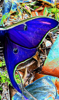 Photograph - Luna Moth False Color Work One by David Lee Thompson
