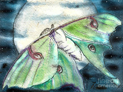 Painting - Luna Moth Full Moon by D Renee Wilson