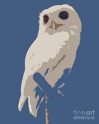 Photograph - Luna The Rescued White Leucistic Eastern Screech Owl Abstracted by Barbie Corbett-Newmin