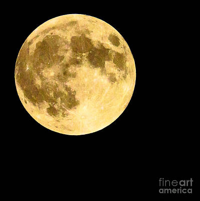 Lunar Close Up Art Print by Sandy Molinaro