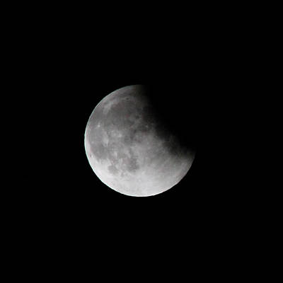 Photograph - Lunar Eclips by Cathie Douglas