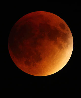 Photograph - Lunar Eclipse 1 by Coby Cooper