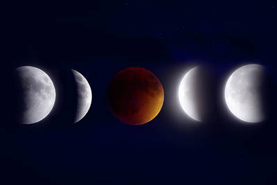 Moonglow Photograph - Lunar Eclipse Montage by Mark Andrew Thomas