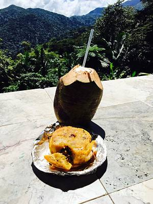 Photograph - Lunch At El Yunque by The Art of Alice Terrill