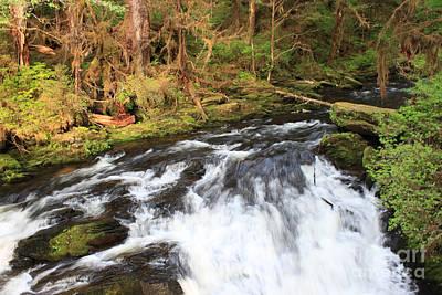 Alaska Photograph - Lunch Creek by Carolyn Brown