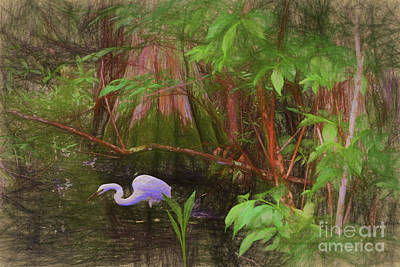 Mixed Media Royalty Free Images - Lunch time in the Swamp Royalty-Free Image by C W Hooper