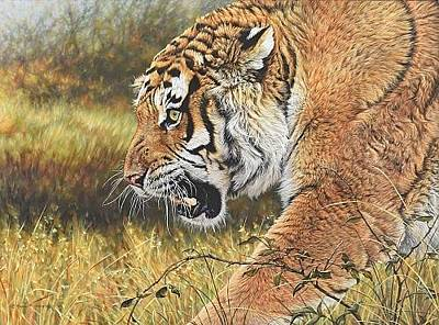 Painting - Lunchtime - Tiger by Alan M Hunt