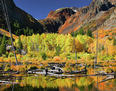Photograph - Lundy Canyon Beaver Pond by Tom Kidd
