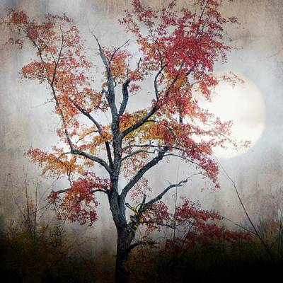 Mixed Media - Lune D' Automne by Diane Paquin