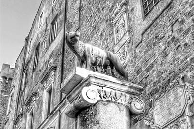 Photograph - Lupa Romana San Pietro In Cancere by Paul Mc Namara