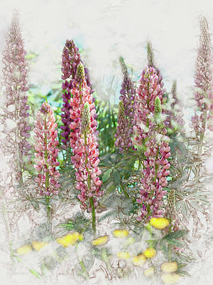 Digital Art - Lupine by Mark Mille