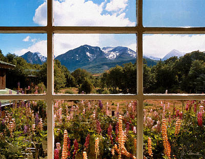 Lupines And Mountains Art Print
