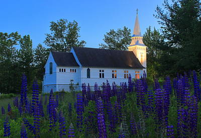 Photograph - Lupines And St Matthew's Chapel At Dusk by John Burk