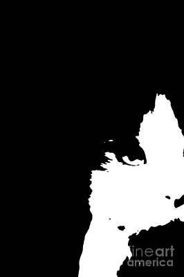 Lurk Digital Art - Lurking In The Shadows - Abstract Black And White by Scott D Van Osdol