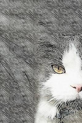 Lurk Digital Art - Lurking In The Shadows - Abstract Gray And White by Scott D Van Osdol