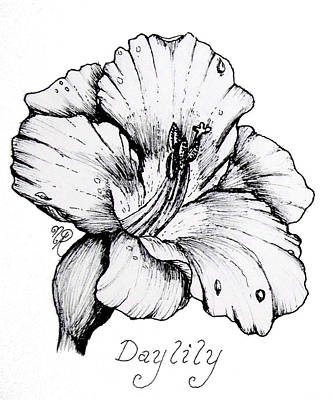 Lilies Drawings - Luscious Daylily  by Nicole Angell